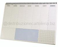 PLANNING CON SPIRALE NON DATATO DOMENICA INTERA 500 x 350mm