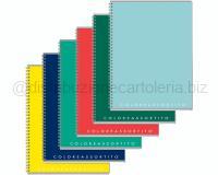 COLOREASSORTITO PPL SPIRALATO CON FORI 80gr 21 x 29,7cm 5MM