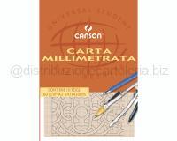 BLOCCO CARTA MILLIMETRATO 297 x 420mm 80gr 10ff LISCIO